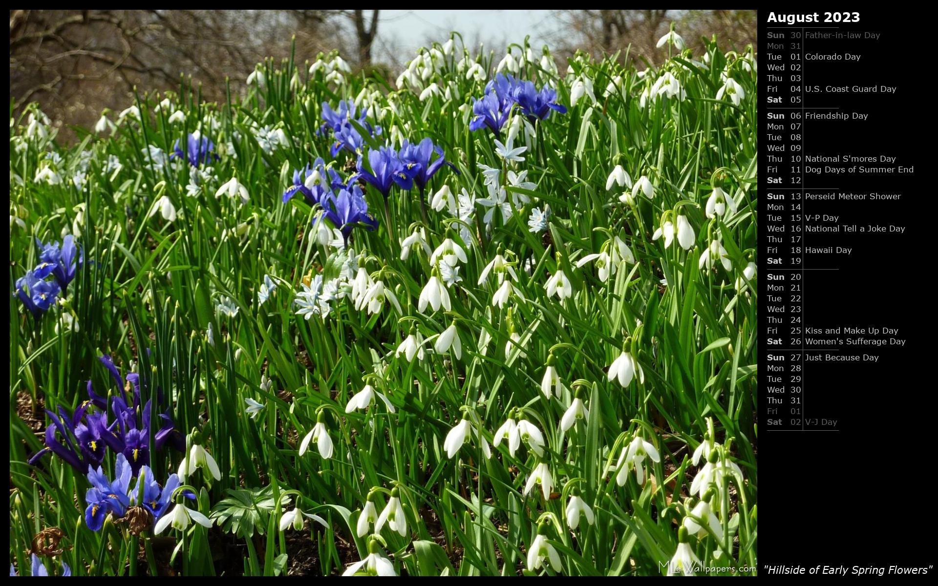 Mlewallpapers Hillside Of Early Spring Flowers Calendar