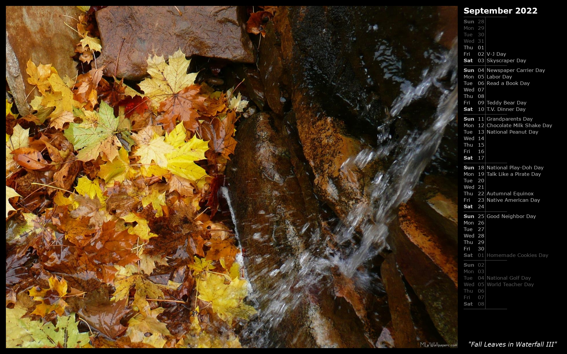 Fall Leaves In Waterfall III