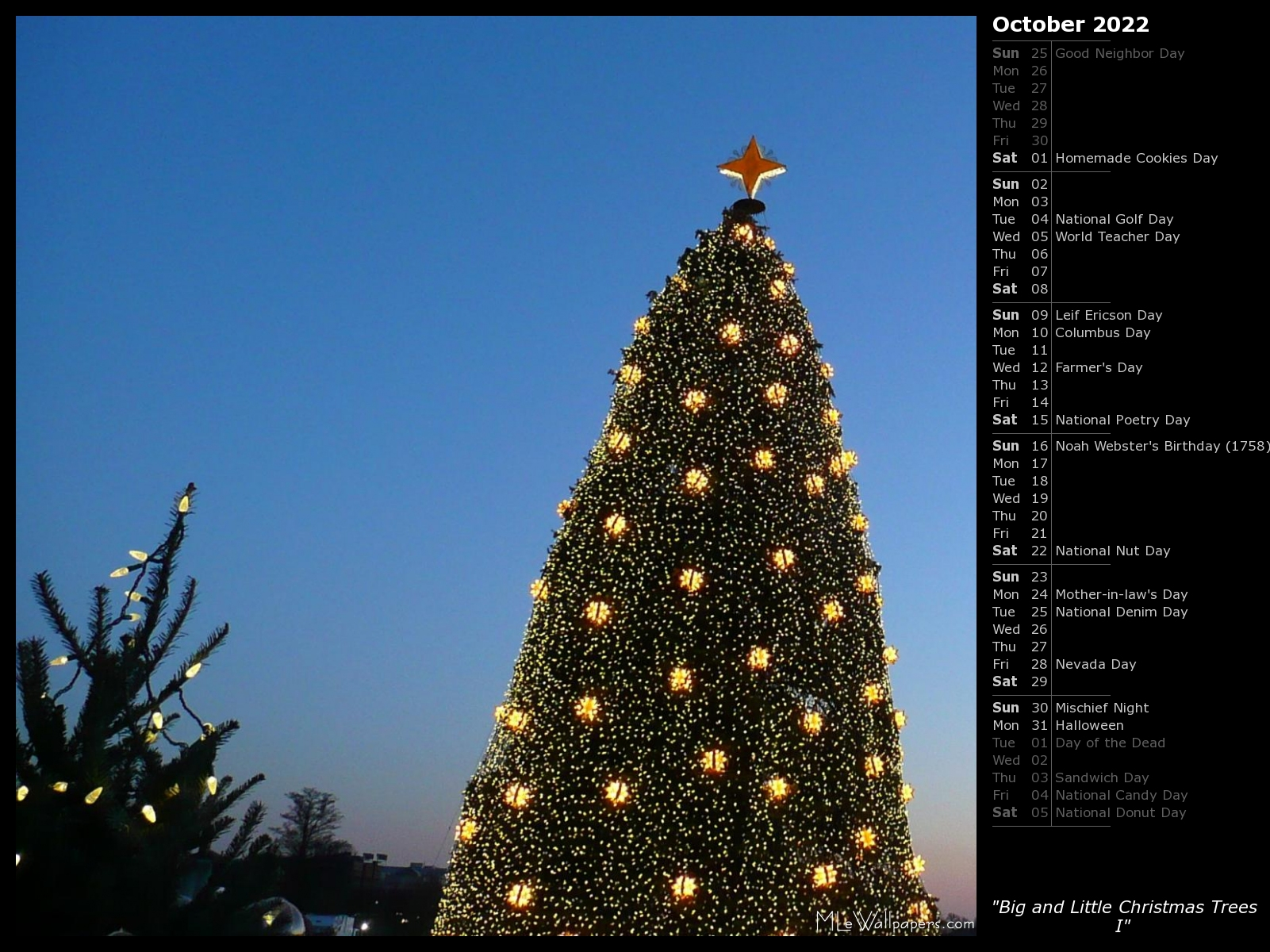 National Christmas Tree 2019.Mlewallpapers Com Big And Little Christmas Trees I Calendar