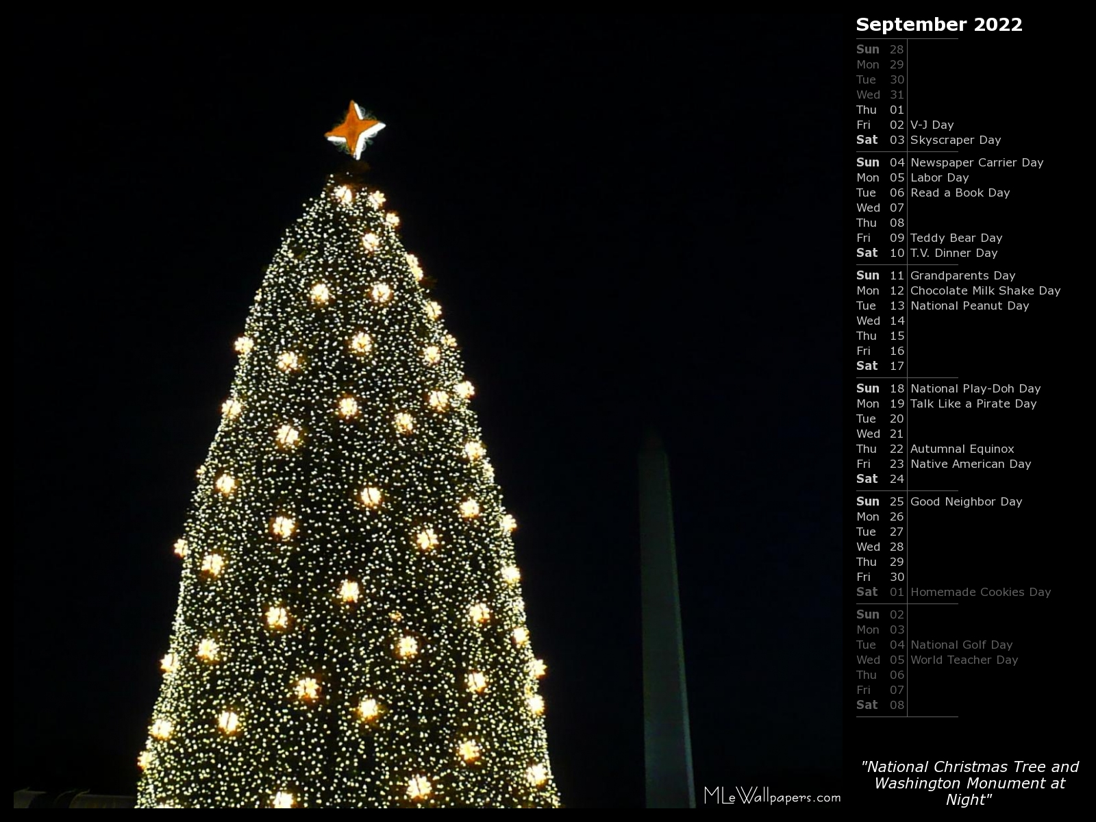 National Christmas Tree 2019.Mlewallpapers Com National Christmas Tree And Washington