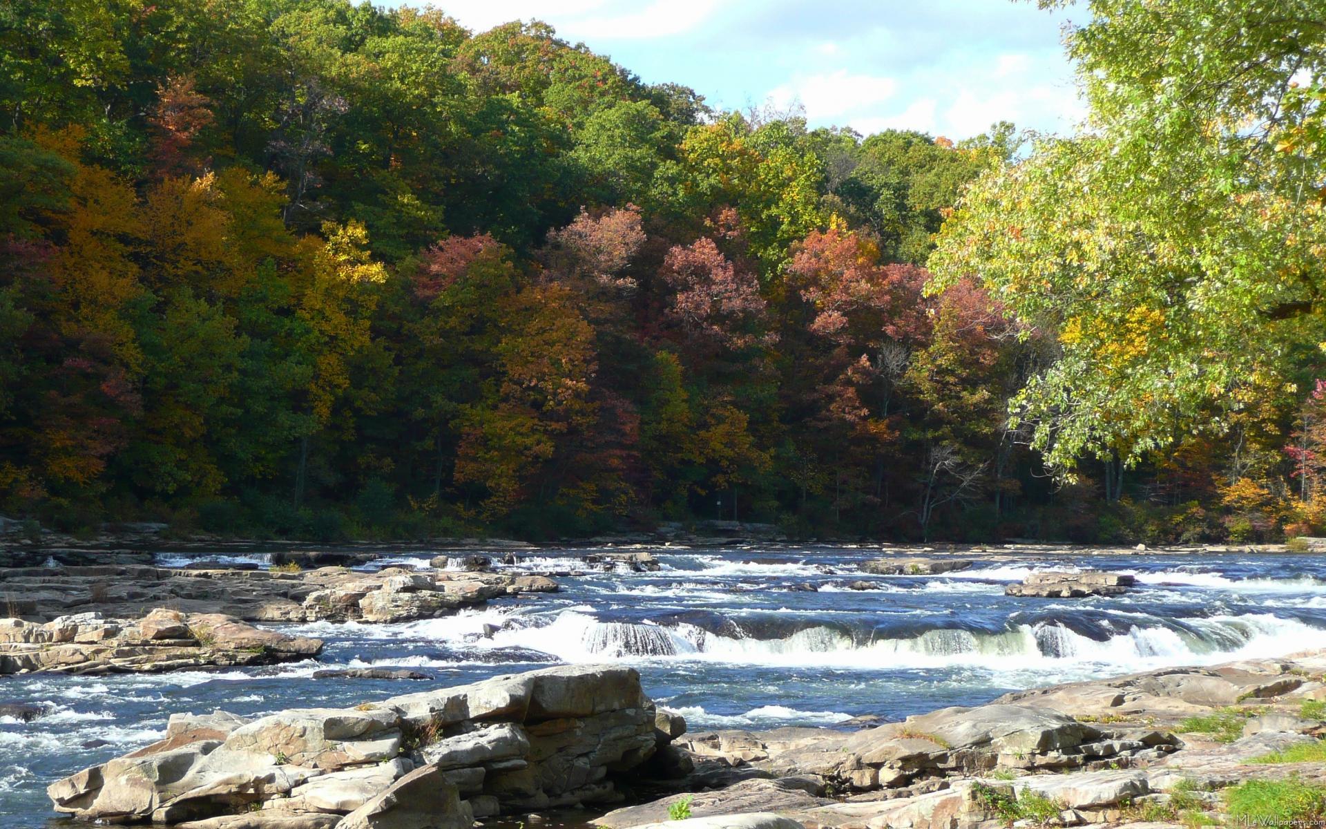 Mlewallpapers Com Ohiopyle River Rapids In Fall